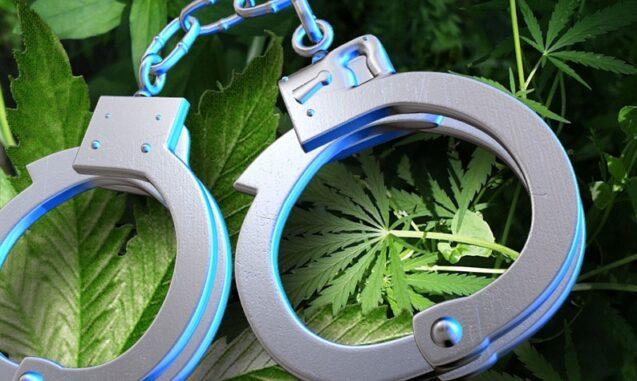 Probation/Parole & Marijuana Use